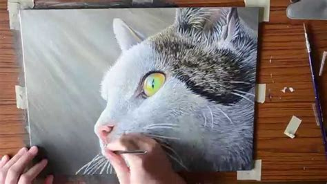 Cat Acrylic acrylic speed painting cat doovi