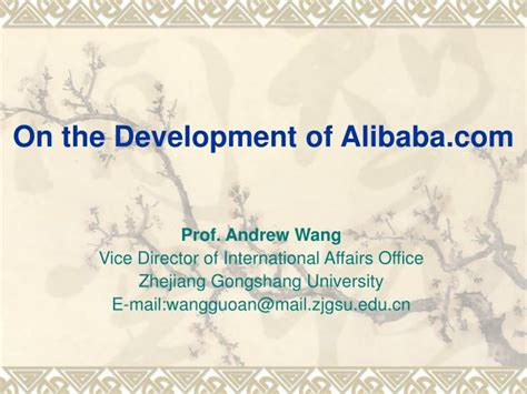 alibaba ppt ppt on the development of alibaba com powerpoint