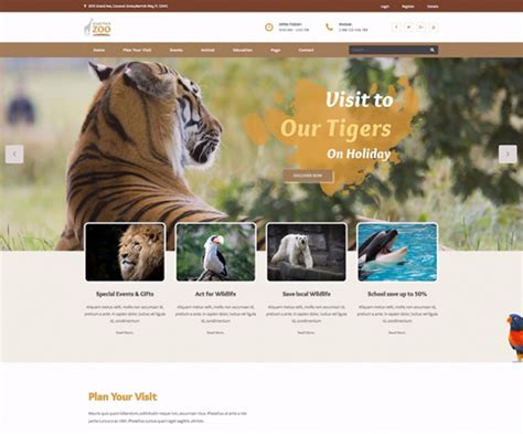themeforest zoo zoo wordpress themes