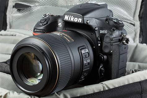 nikon pro 9 best entry and professional level dslr cameras of 2018