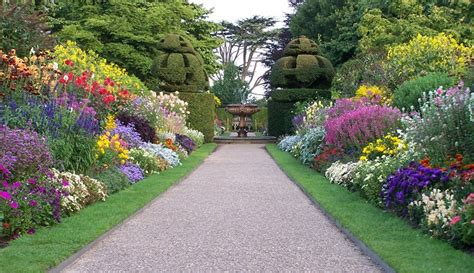 imagenes de jardines soñados 191 c 243 mo estoy plantando el jard 237 n de mi vida el vers 237 culo