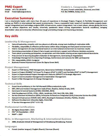Resume Sle For Director by Executive Summary Resume Executive Summary Dynamic