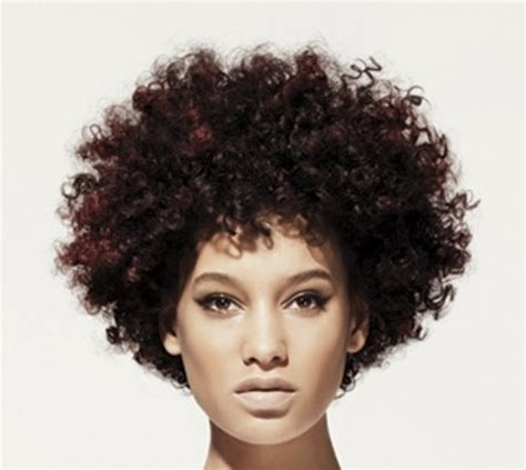 afro hairstyles video curly afro hairstyles for womens fave hairstyles