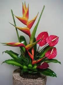 Simple Christmas Centerpiece Ideas - tropical flower arrangement bondiz flowershop