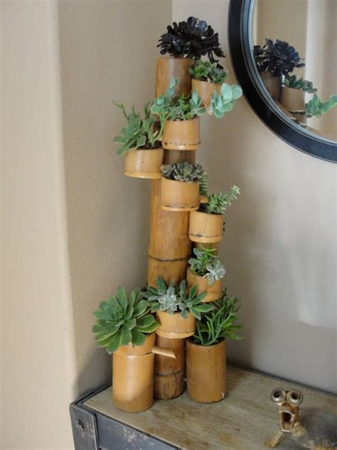 Bamboo Planter Ideas by Bamboo Succulent With Twelve Cups Filled With A