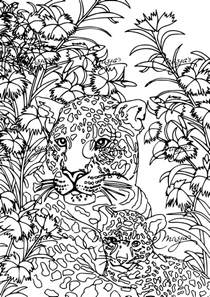 coloriage anti stress tigre 224 imprimer sur coloriages