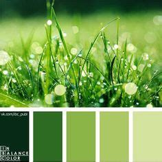 499100 hex color rgb 73 145 0 forest green green printable rgb color palette swatches color matching