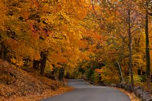 in color nj 2016 new jersey fall foliage road trip