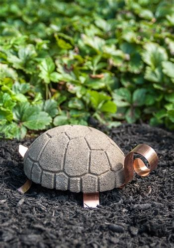 Home Decor Wholesalers Usa by Tilley The Lonely Turtle