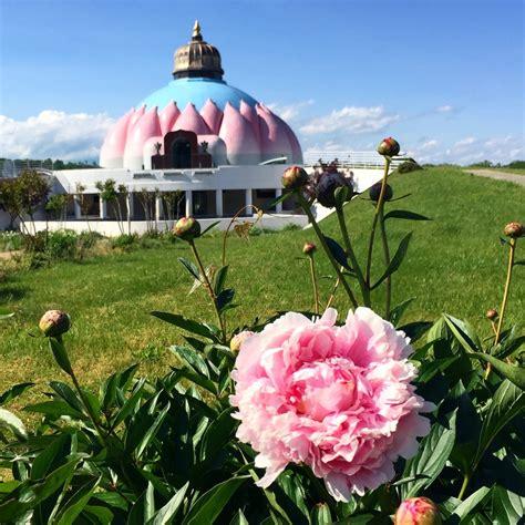 lotus temple va dot gallery