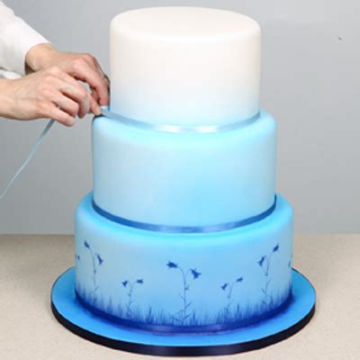 Blue Ribbon Cake Decorating by Moody Blues Airbrushed Cake Tutorial By Munro Airbrushes