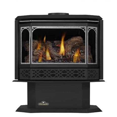 napoleon direct vent gas fireplace napoleon gds50 1nsb direct vent gas stove at
