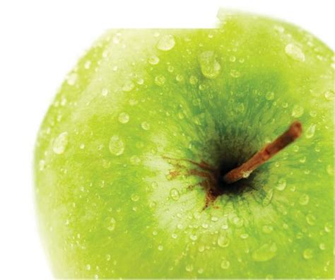 apple stem cell stem cells an apple a day