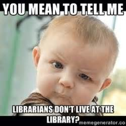 You Mean To Tell Me Meme - 73 best images about library memes on pinterest