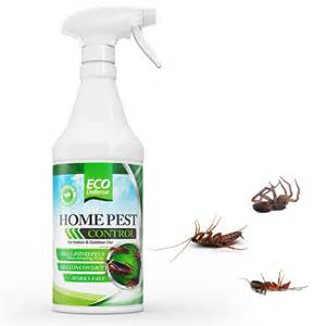 Home Pest Control mygreatfinds organic home pest control spray from eco