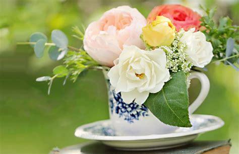 imagenes lindas de flores flores lindas fotos imagens whatsapp