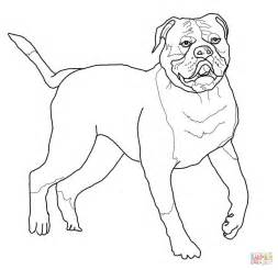 bulldog coloring pages usmc bulldog coloring pages coloring pages