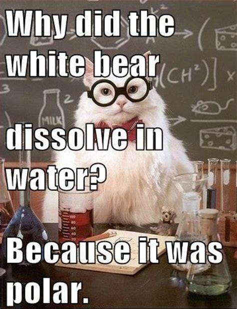 Funny Chemistry Memes - cdn themetapicture com media funny chemistry cat joke meme