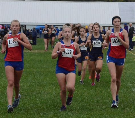 east alton wood river cross country results enquirer