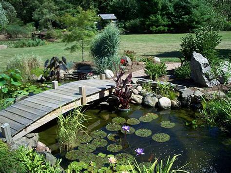 Backyard Pond Images by Invite Nature Into Your With Garden Ponds