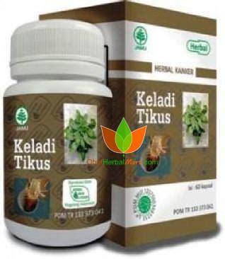 Herbal Keladi Tikus Keladi Tikus Herbal Indo Utama 60 Kapsul Obat Kanker