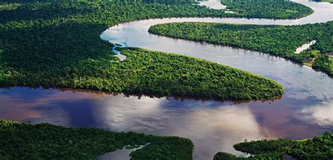 river bed definition brasilien amazonas 187 dorado latin tours