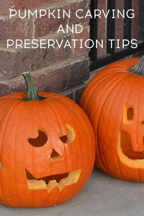 whole pumpkin preservation 10 easy decor ideas cook craft