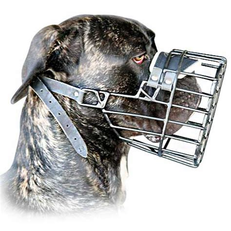 wire muzzle for shih tzu big wire basket muzzle for great dane breeds picture