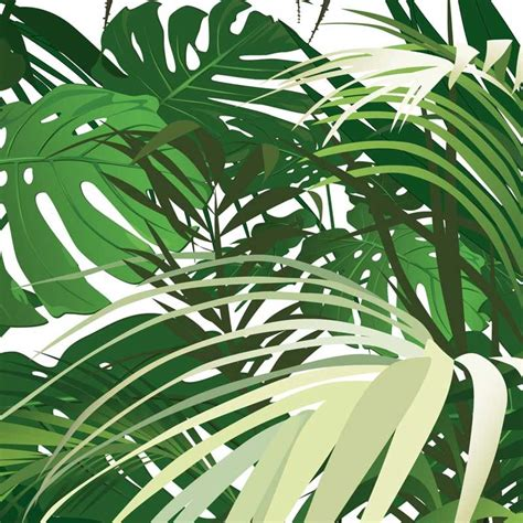 Photo Papier Peint by Papier Peint Personnalis 233 Photo Jungle Panoramique Poster