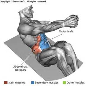 Shoulder Pain When I Bench Press Abdominals Dumbbell Russian Twist Exercices
