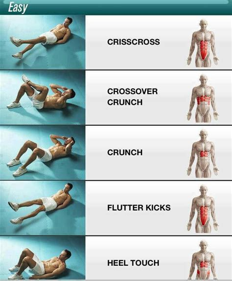ab workouts this shows you which muscles it targets with different ab exercises health and