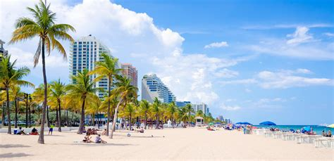 fort lauderdale things to do in greater fort lauderdale