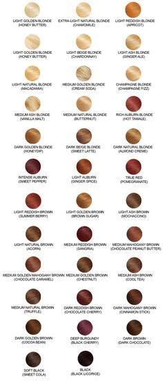 mahogany hair color chart 1000 ideas about dark mahogany hair on pinterest