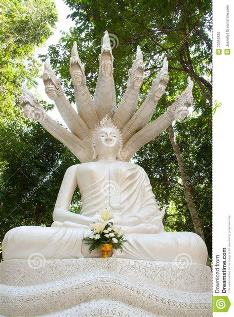 sette teste buddha bianco e sette teste naka tailandia fotografia