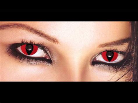 Spooky Trend Colored Contacts by Contact Lenses Scary Cat Blackout