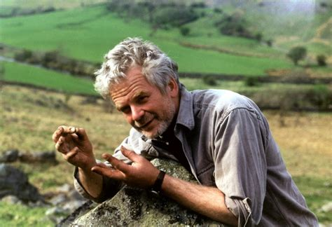 biography films about artists andy goldsworthy