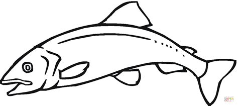 salmon 11 coloring page free printable coloring pages