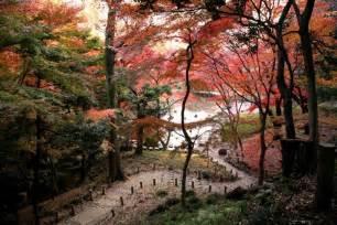Koishikawa Korakuen Garden autumn foliage in japan the greatest site