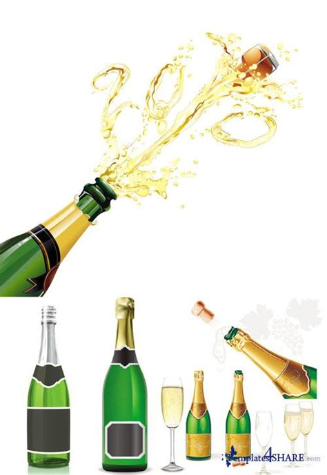 Champagne Vector Illustrations » Templates4share.com