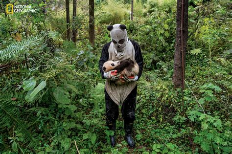 what s the best costume humans and nature books the daily edit national geographic magazine ami vitale