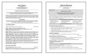 Resume Format Many Jobs by Multiple Careers Resume Example