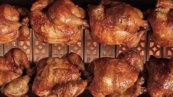 Keranjang Ayam Jogja jual pemanggang ayam gas rotisseries horizontal di