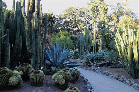 giardino botanico orari il giardino botanico di valencia orari e costi visitare