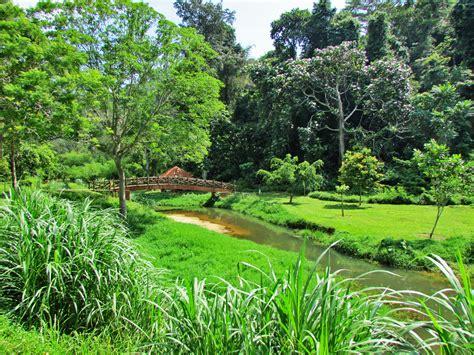 Botanical Garden Penang Penang Botanic Gardens Perspective Of Penang