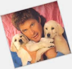 david hasselhoff puppies david hasselhoff puppies www pixshark images galleries with a bite