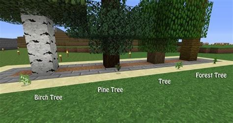 best tree farm how to build a tree farm in minecraft for easy access to