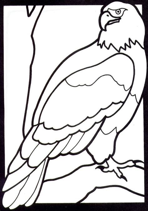 coloring pages of eagle bald eagle coloring page az coloring pages