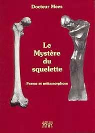 Le Myst 232 Re Du Squelette Les Os