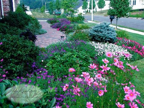 plants for front yard front yard planting design traditional landscape new