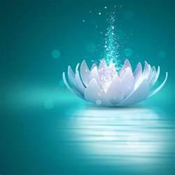 Lotus Screensaver Lotus Flower Stock Photo Image 44347388